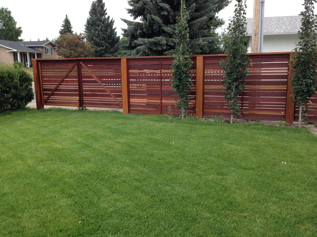 New Sod Care - Chinook Landscaping Calgary